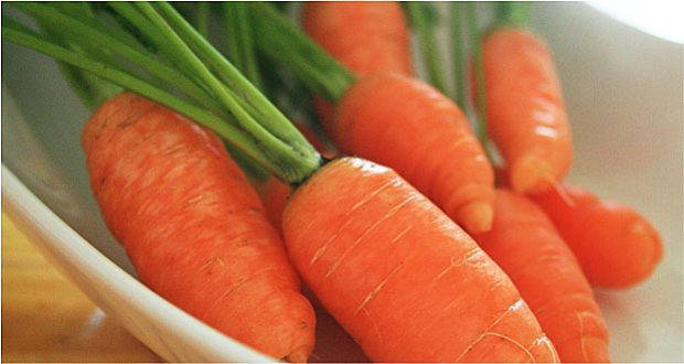 Motivation and Home Schooling: Finding the Right Carrot