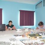One Family's Homeschooling Saga