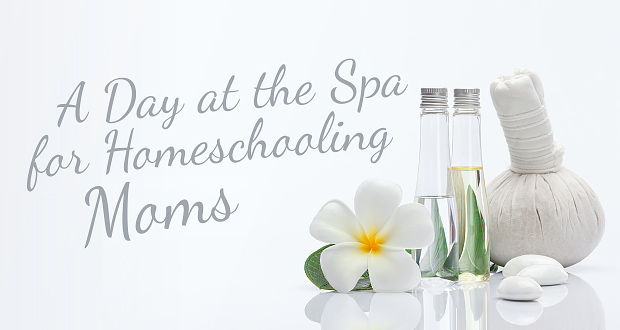 A Day at the Spa for Homeschooling Moms - by John Clark