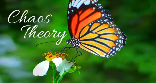 If Butterflies Can Change the World, Think About How Much You Can Do!