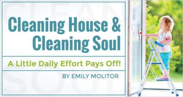 Cleaning House & Cleaning Soul: A Little Daily Effort Pays Off! - by Emily Molitor