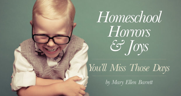 Homeschool Horrors and Joys: You'll Miss Those Days - by Mary Ellen Barrett