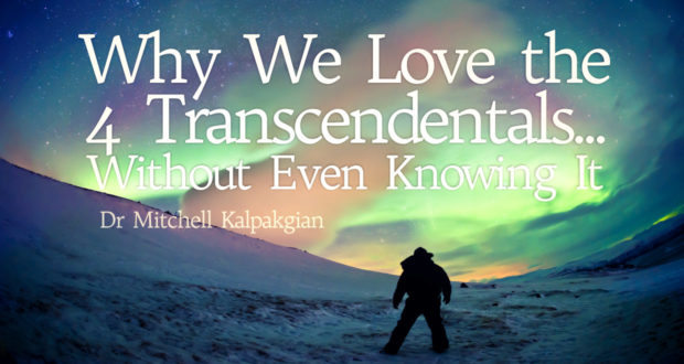 Why We Love the 4 Transcendentals... Without Even Knowing It - by Mitchell Kalpakgian