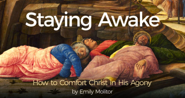 Staying Awake: How to Comfort Christ in His Agony - by Emily Molitor