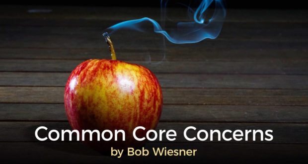 Common Core Concerns