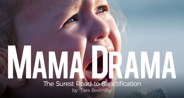Mama Drama: The Surest Road to Sanctification - by Tara Brelinsky