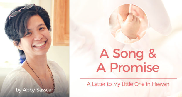 A Song & A Promise: A Letter to My Little One in Heaven - by Abby Sasscer