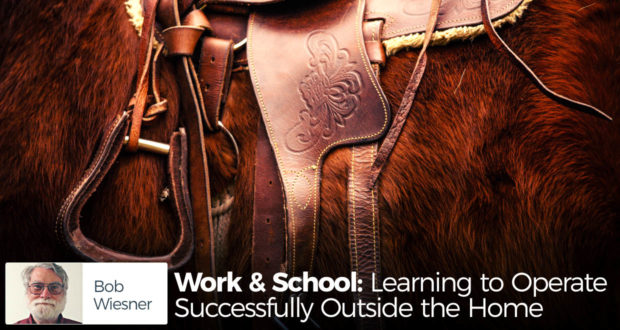 Work & School: Learning to Operate Successfully Outside the Home - by Bob Wiesner