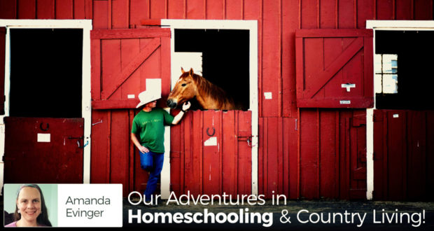 Our Adventures in Homeschooling & Country Living! - by Amanda Evinger