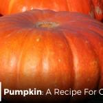 Pumpkin: A Recipe For Controversy - by John Clark