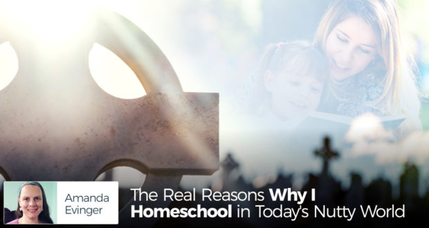 The Real Reasons Why I Homeschool in Today's Nutty World - by Amanda Evinger