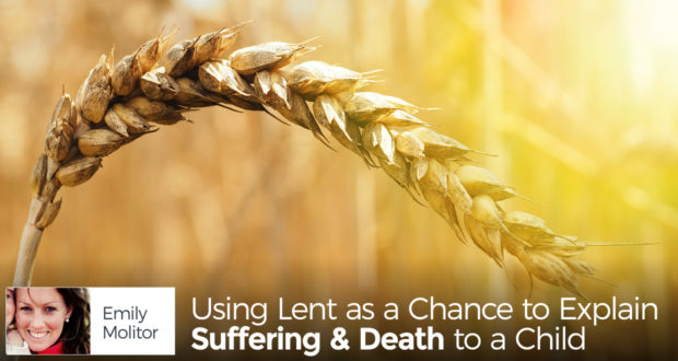 Using Lent as a Chance to Explain Suffering & Death to a Child - by Emily Molitor