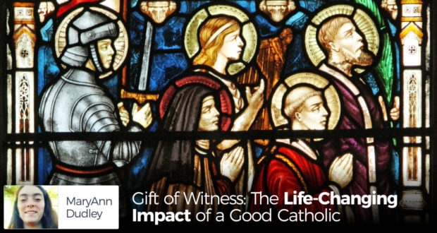 Gift of Witness: The Life-Changing Impact of a Good Catholic - by MaryAnn Dudley