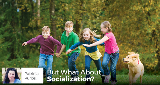 But What About Socialization? - Patricia Purcell