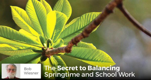 The Secret to Balancing Springtime and School Work - Bob Weisner