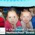 It's No Secret - Seton is Our Homeschool 'Stress Reliever' - Heather Hryniewiecki