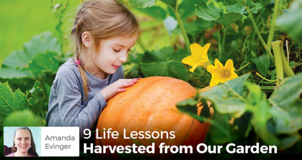 9 Life Lessons Harvested from Our Garden - Amanda Evinger