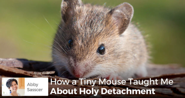 How a Tiny Mouse Taught Me About Holy Detachment - Abby Sasscer