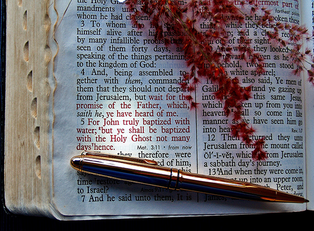 7 Tools Our Children Need to Discern God's Will - Abby Sasscer