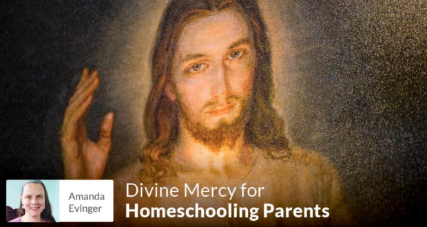 Divine Mercy for Homeschooling Parents - Amanda Evinger
